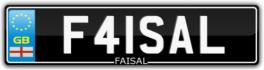 F41SAL