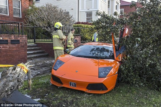 Whoops! Lamborghini owner trying to sell his $280k V12 supercar smashes into a tree during a test drive